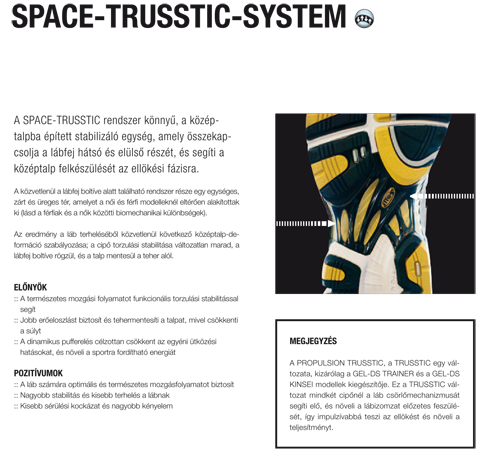 Space-Trusstic-System