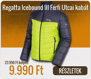 Regatta Icebound III Férfi Utcai kabát - RMN100-SlGry_LimeGr_